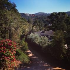 Em Campos, o dia amanhece assim: céu azul sem uma única nuvem