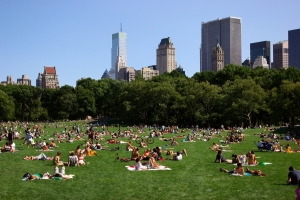 Top-10-Free-Things-To-Do-In-New-York-City-This-Summer1