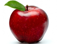 folhas-de-maçã-nb4505